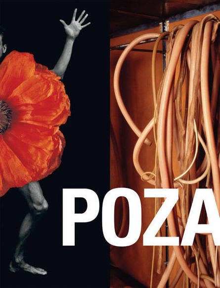POZA: On the Polishness of Polish Contemporary ART / D.A.P. Real Art Ways, 2008