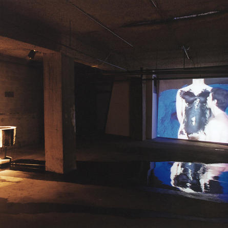 Monika Weiss: Koiman, Space 1181, Atlanta, 1998