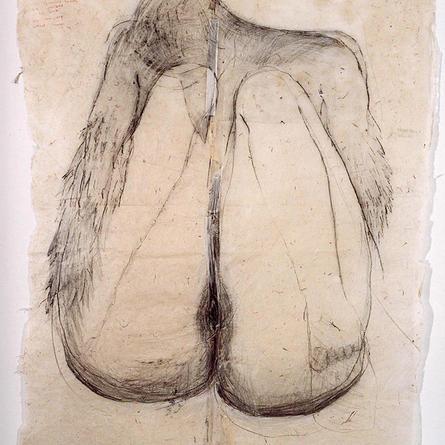 Ennoia (Bird) 2000